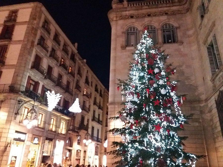 barcelona-zimoy
