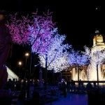 Рождество в Испании и традиции