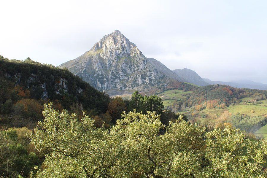 cantabria-oriental-rural