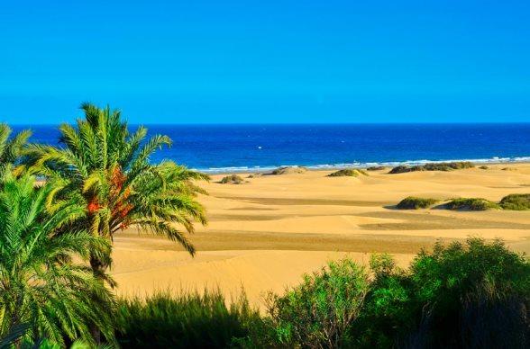 Канары в январе: температура, отдых и туры, рекомендации путешественникам