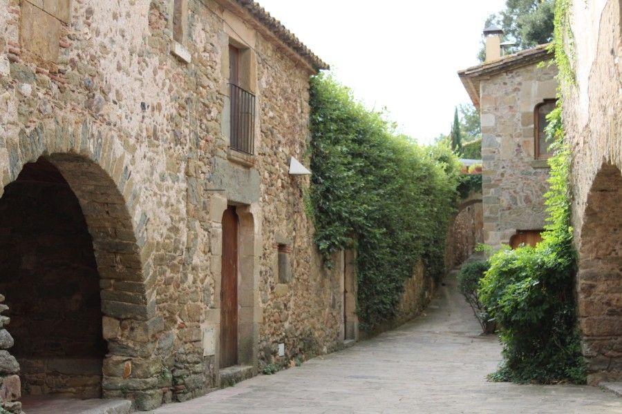 Деревня Монейс Каталония